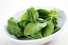 baby-spinach-5269725